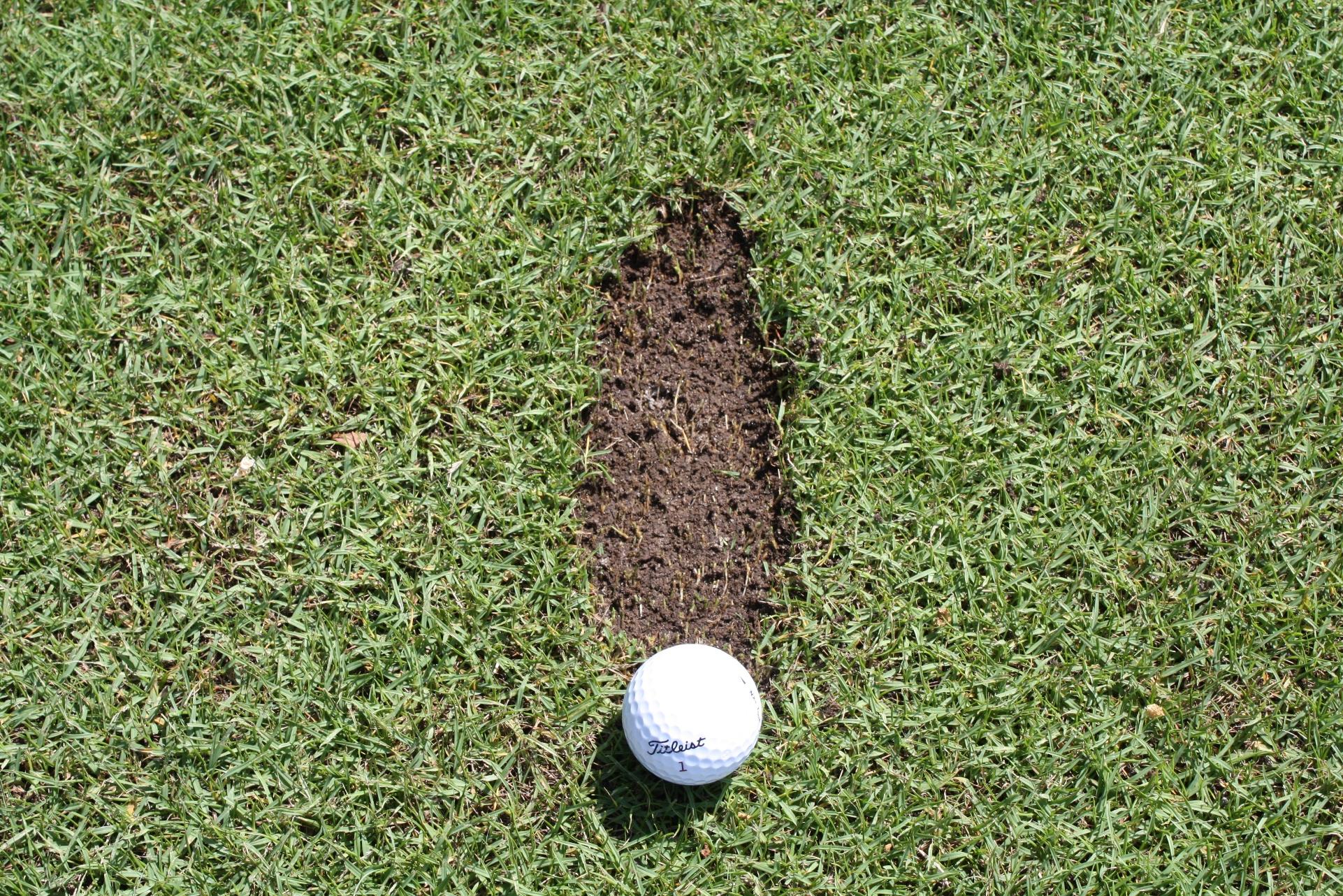 Chuletas en golf | Todo lo que cuentan de ti.